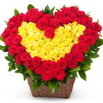 장미꽃100송이-사랑의 마력
