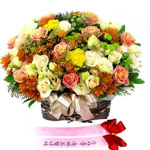 유엔아이 꽃바구니배달